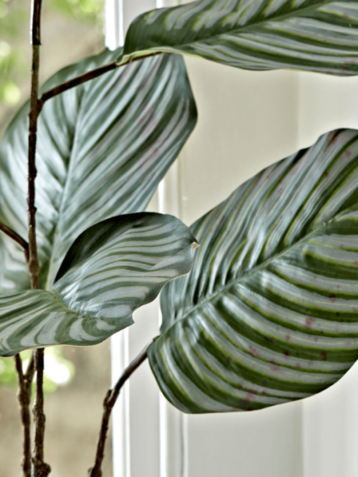 Potted Calathea Faux Plant